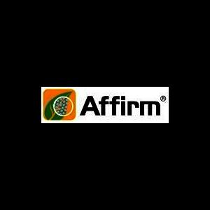 AFFIRM10