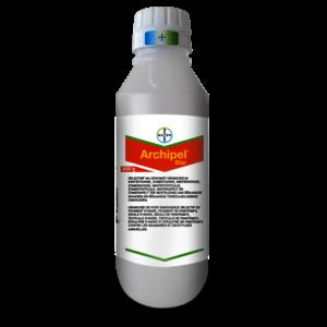 ARCHIST600