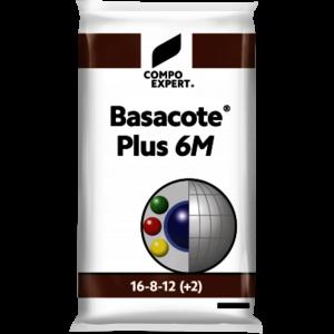 BASAC6
