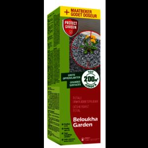 BELOUGA450