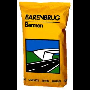 BERMEN15
