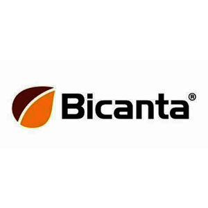 BICA5