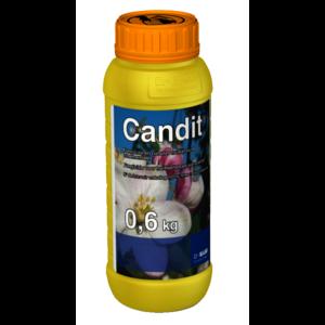 CANDIT
