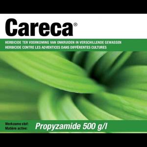 CARECA