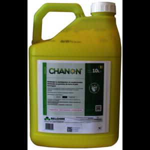 CHAN10