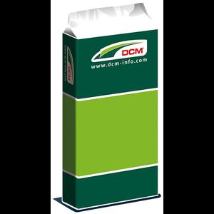 DCMM1