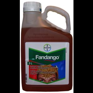 FANDA5