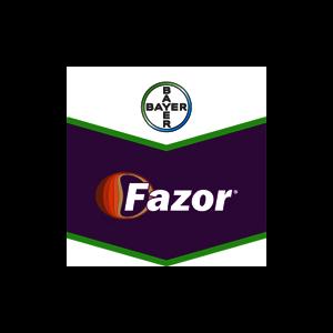 FAZOR20