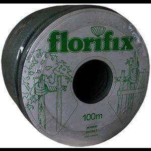 FFIX100