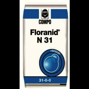 FLO31