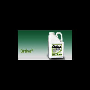 ORTI5