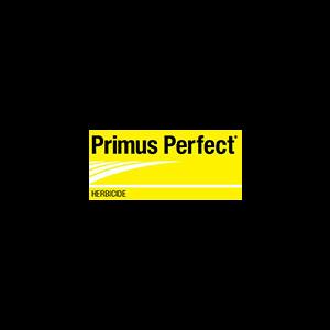 PRIMP1